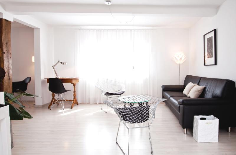 Apartment 'Starkenburgblick'(Bauhaus-design) 5****, vacation rental in Gernsheim