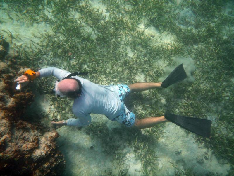 Snorkelling off Jabberwocky