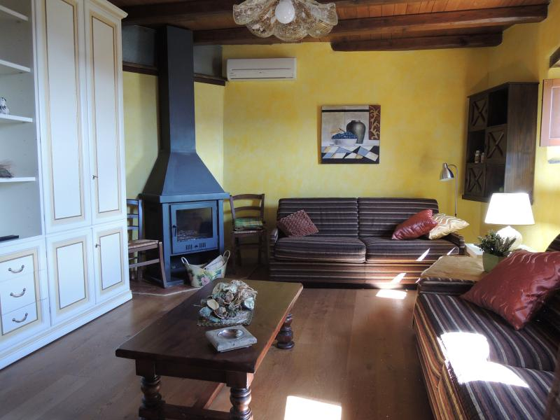 un largo salone con due divani climatizzato con camino a legna perche in vacanza voglio stare comodo