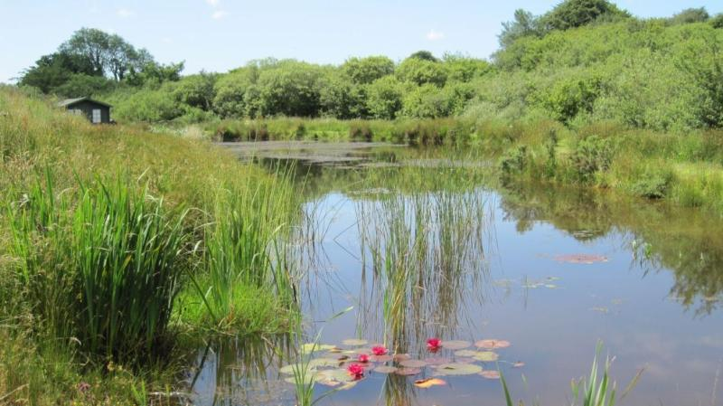 Hidden Lakes - Lower Lake