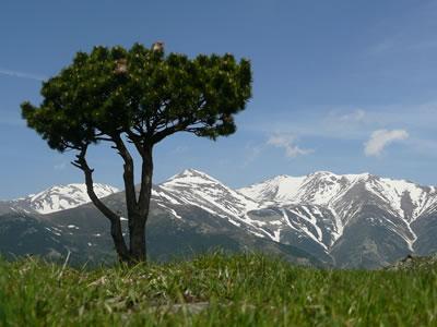 Canigou - high mountains and coast on our doorstep