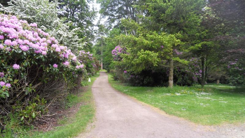 One of many accessible paths through Galloway House Gardens for guests to enjoy free of charge.
