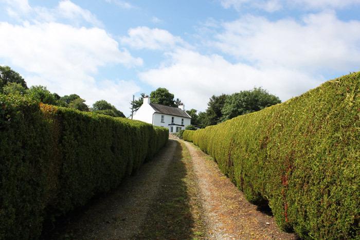 Hillbrook Driveway