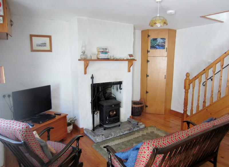 Wood burning stove and flat screen TV in the living room