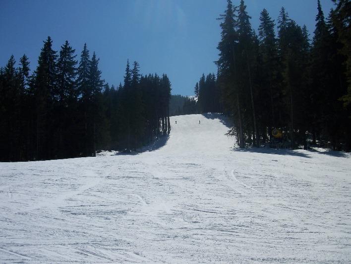 Las pistas están vacías en ciertas épocas del año, que la montaña de esquí o un Consejo para ti