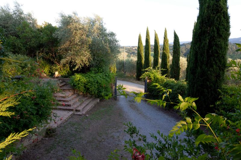 The access to the House, among cypress trees and fields of sunflowers greets in the garden orchard and rose garden