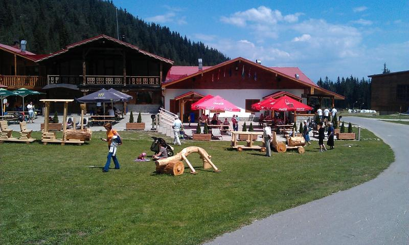Another image of the mountain in the summer, get the gondola and have a walk, wine, beer & lunch