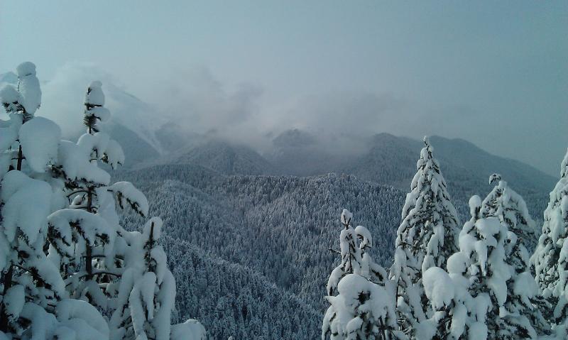 Un refrescante paseo en las montañas, un pase de día es muy barato para los caminantes en la góndola