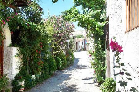 Quiet, cobbled village street
