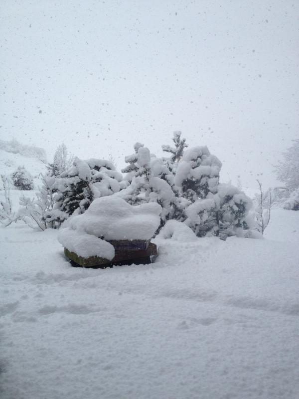 Winter am Buchberg