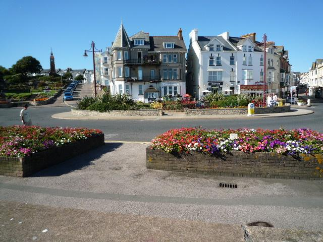 Seafront Flowers