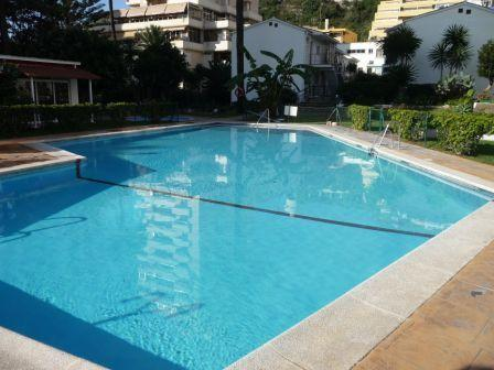 A fabulous swimming pool, in the gardens, within 25m of your front door.