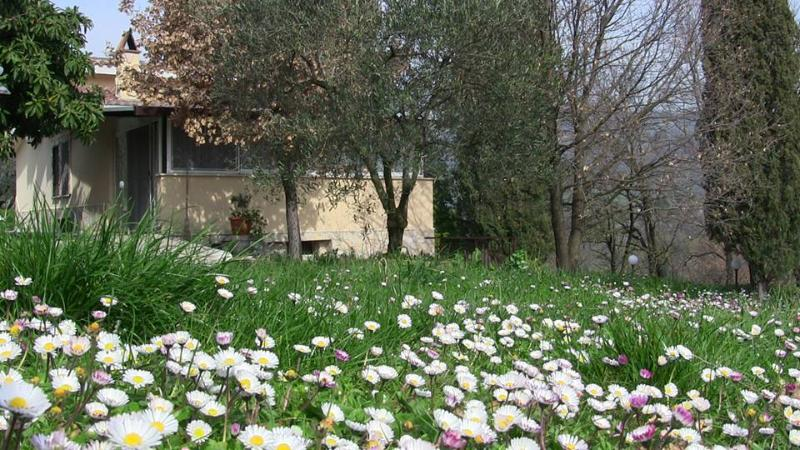 Country House Villa Pietro Romano: Easter is arrived