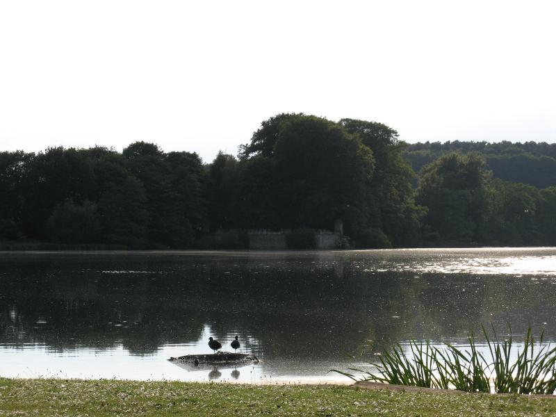 The Lake & Byron's Folly beyond