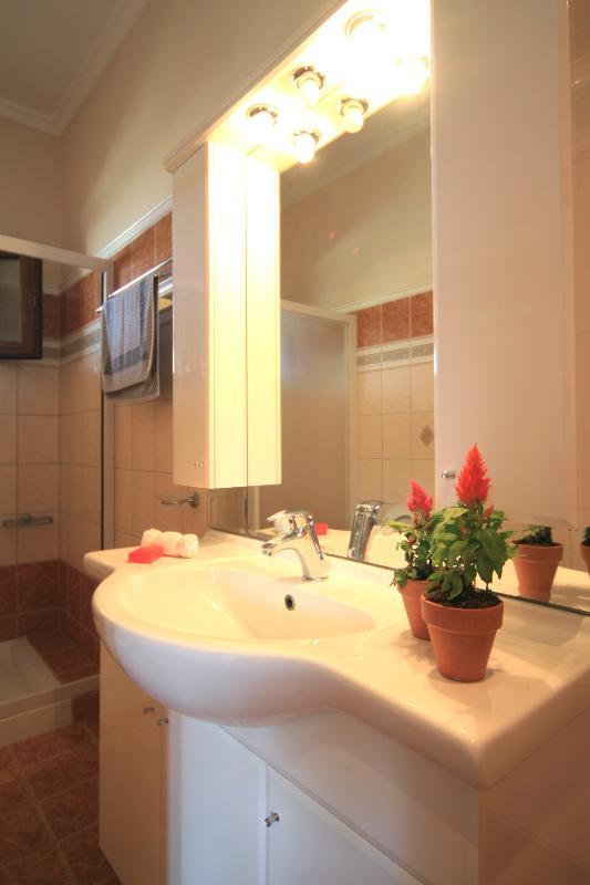 Villa Loukas Bathroom