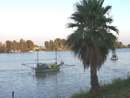 le long du Guadalquivir