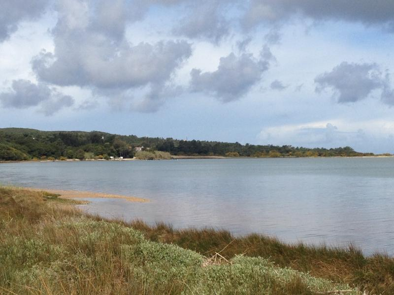 Lagoon edge with lots of small sandy beaches from walking and cycle paths