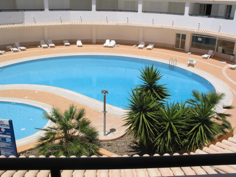 Swimming Pool in the Complex
