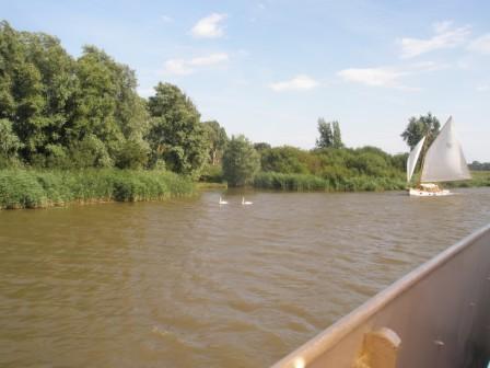 Waveney River Trip