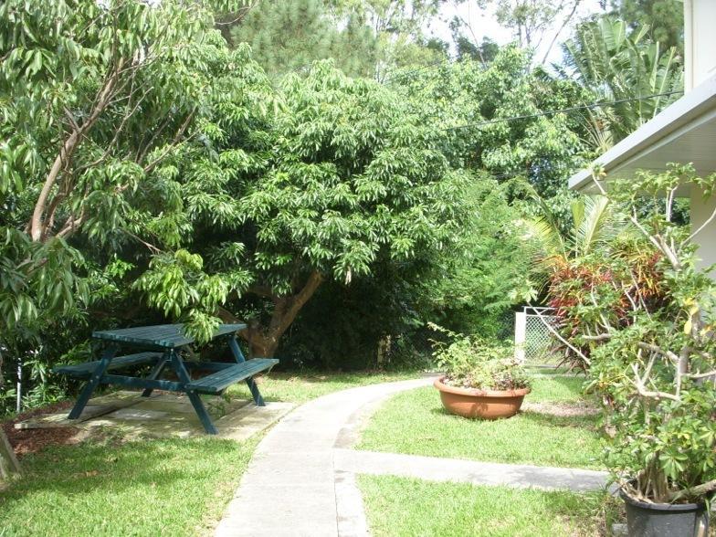 jardin 'allée d'accès au gîte'