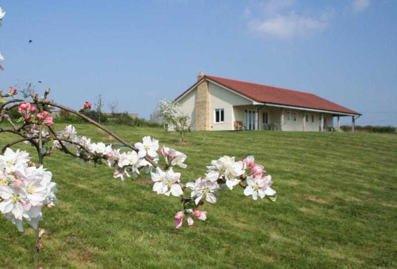Orchard Lee, vacation rental in Brighstone