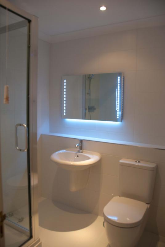 Newly Refurbished Luxury Shower Room