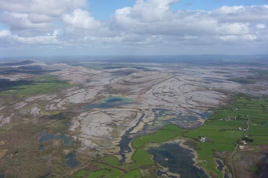 The famous Burren  with its  wonderful flora and fauna ,a walkers paradise .