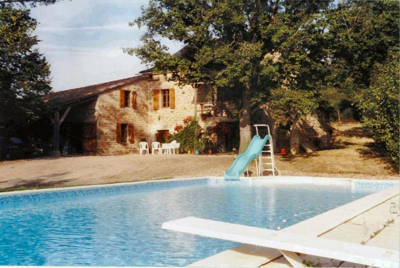 Pool with diving board / house