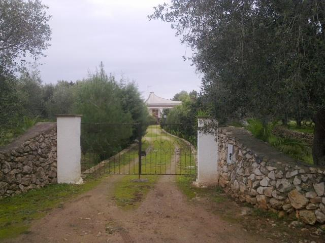 The main access to the residence with driveway