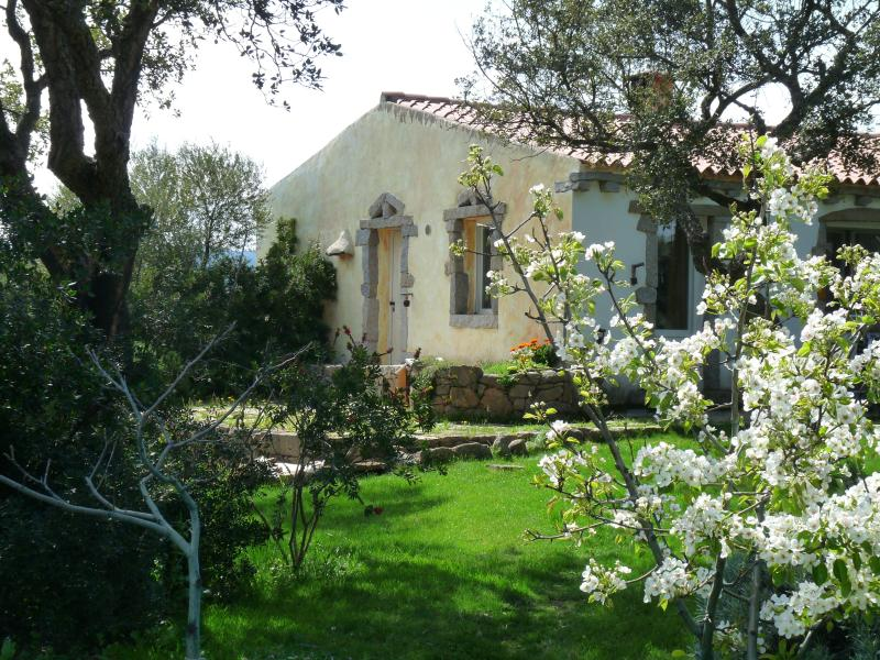 La Scala  Don Quijote, holiday rental in Olbia