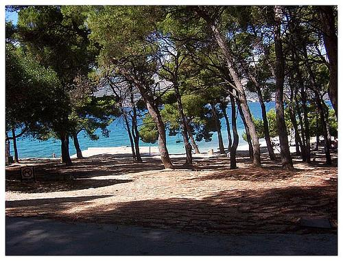 Marjan Park-Forrest, 5 min walking from apartment