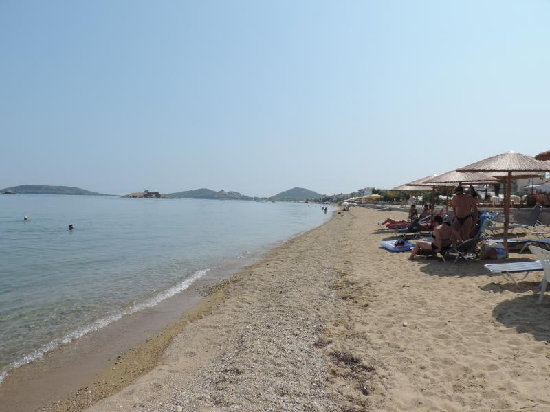 Beech near Kavala,  Greece - 2 hours from Bansko