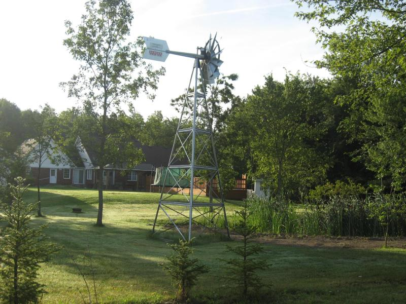 pond and windmill