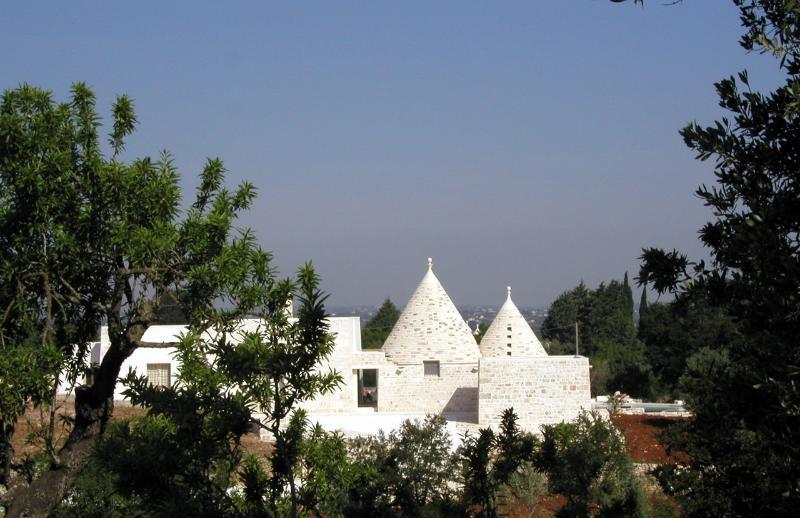 Villa Santoro through Almonds
