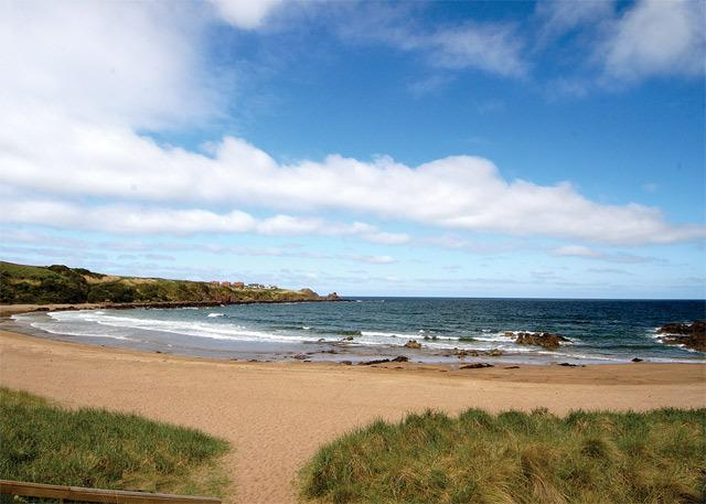 Hollyview, holiday rental in Coldingham
