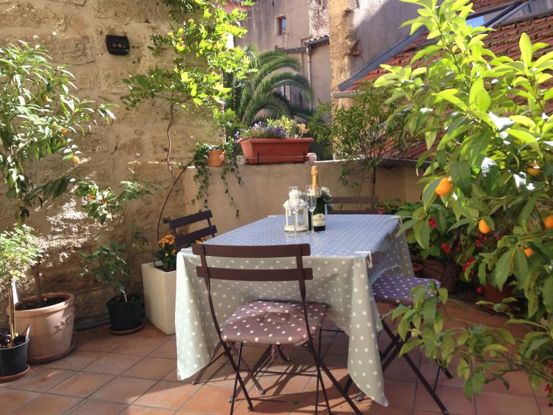The sunny terrace is a welcome additional entertaining area straight off the lounge / dining area.