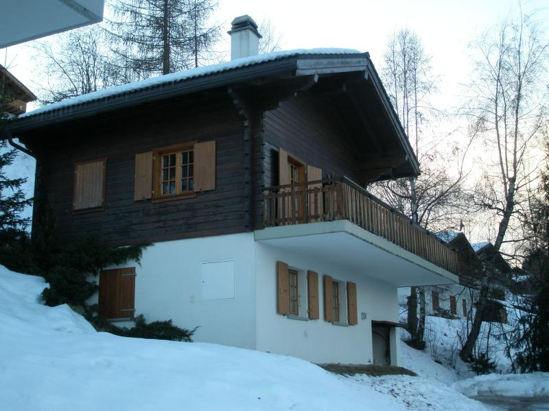 Chalet Les Serandes in winter
