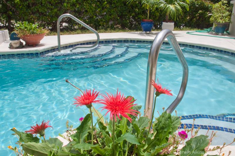 Área de la piscina durante el día