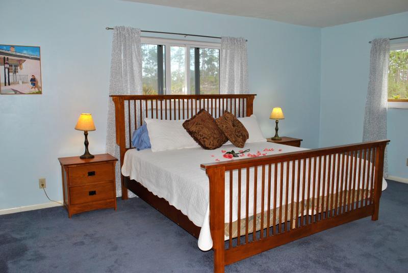 Master bedroom met king size bed