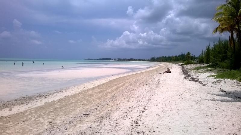 Strand van banaan Bay, net op de weg