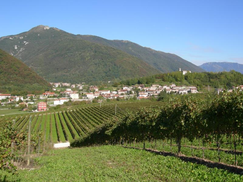 CASAVACANZE DAGOSTIN - COLLINE DEL PROSECCO, holiday rental in Carpesica