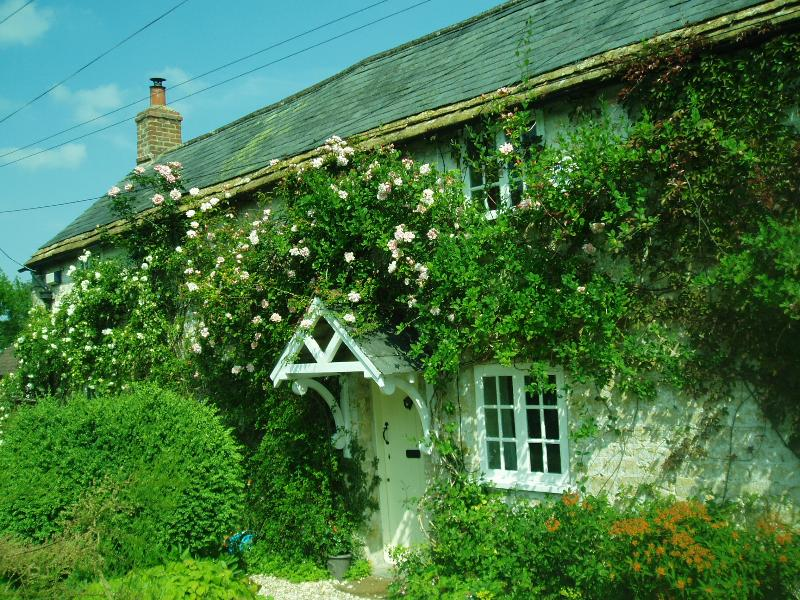 Church Hill Cottage - Roses