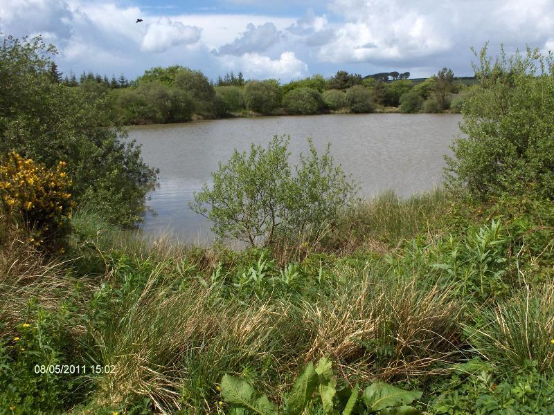 Lacs de pêche - Exclusive et gratuite pour les clients