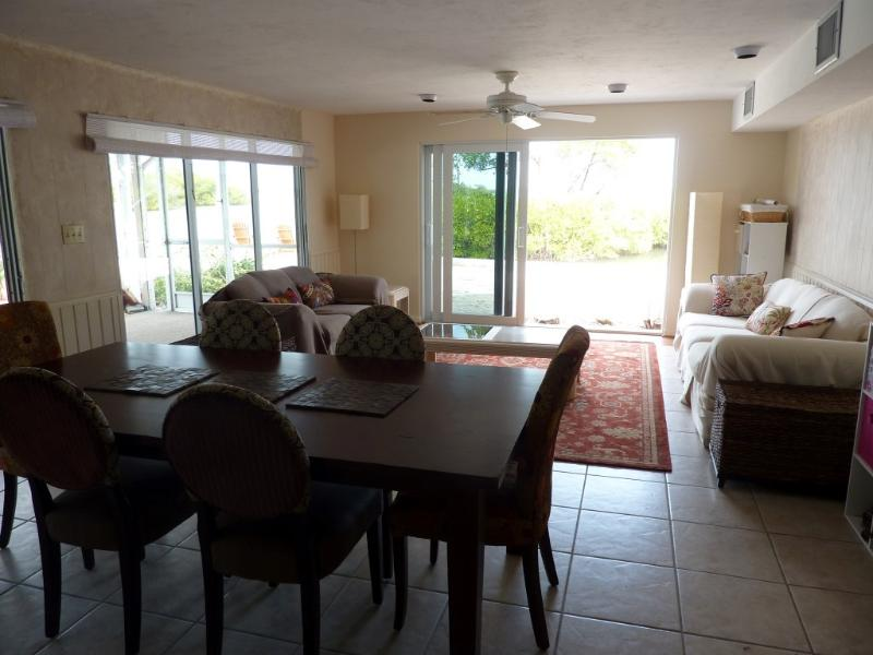 Lower dining/living room