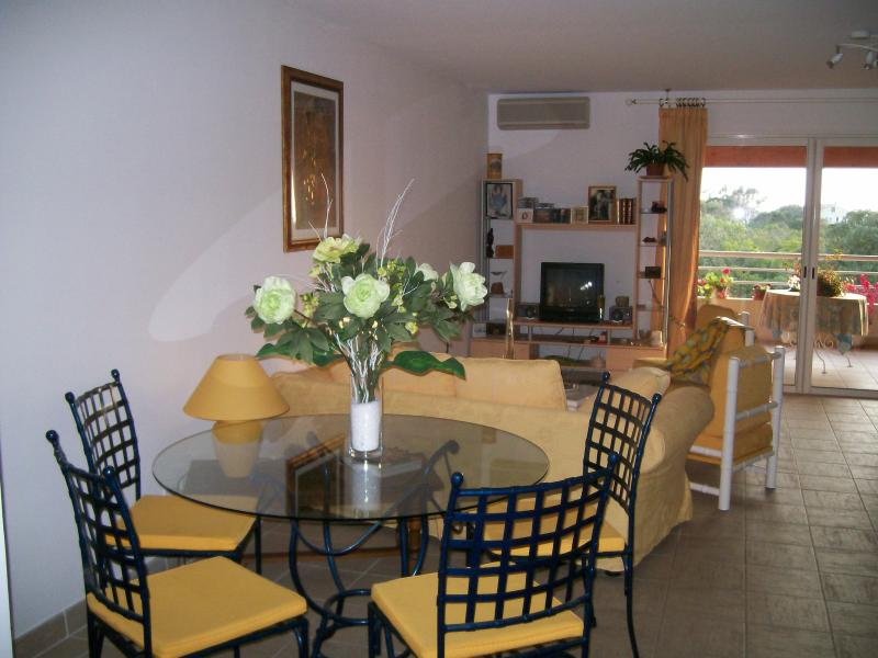 T. BEAU T3 DE STANDING, vacation rental in Petreto-Bicchisano