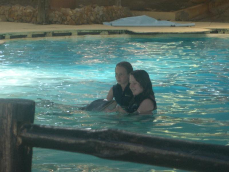 nager avec les dauphins à zoomarine