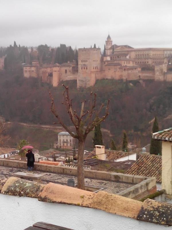 Vue sur l'Alhambra depuis la terrasse