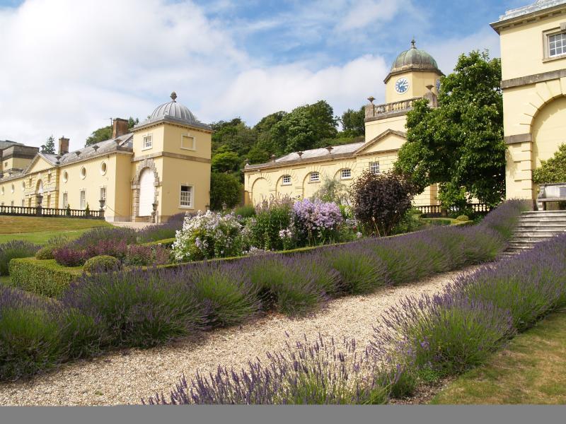 Filleigh Castle  - 10 miles away -  lovely walks