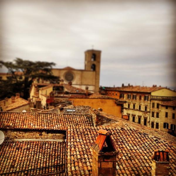 vista panoramica sui tetti di Todi, Italy