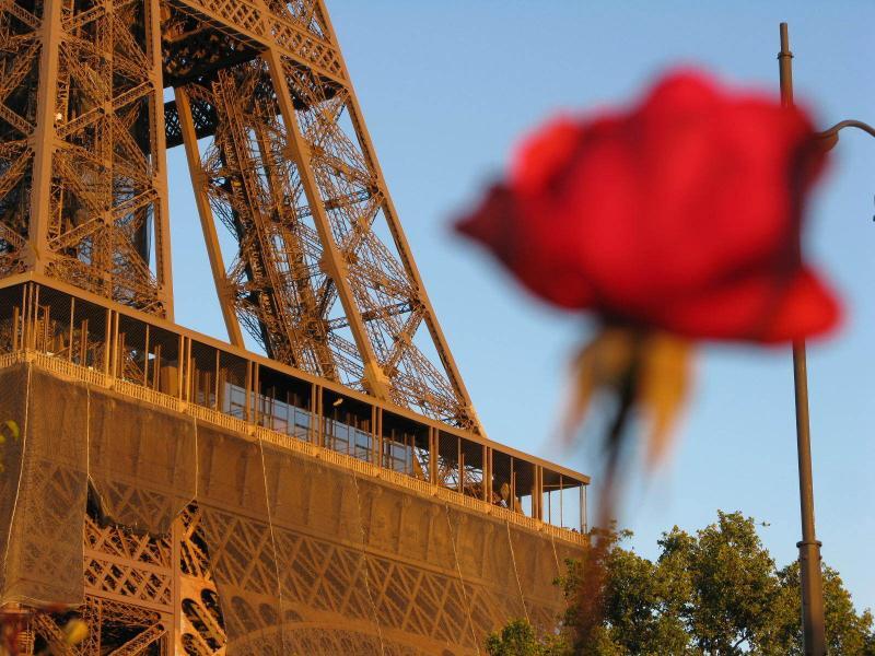 Romantic Luxury Apartment in Paris